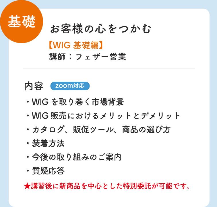 基礎 お客様の心をつかむ WIG 基礎編 講師:フェザー営業 内容 zoom対応 ・WIGを取り巻く市場背景 ・装着方法 ・WIG販売におけるメリットとデメリット ・今後の取り組みのご案内 ・カタログ、販促ツール、商品の選び方 ・質疑応答